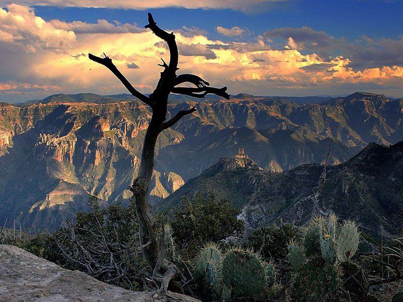 Какие самые большие каньоны в мире?