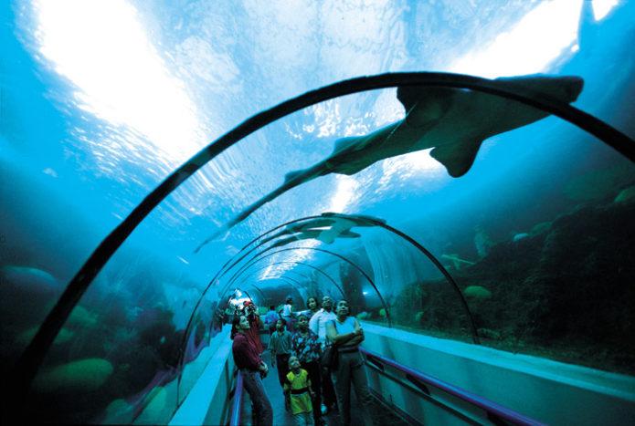 Национальный аквариум в Доминикане