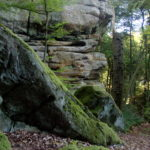 Скалы и лес